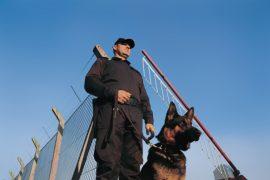 agent et chien